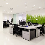 office carpet cleaning johannesburg