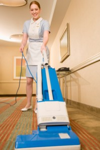 domestic cleaning southern surburbs cape town