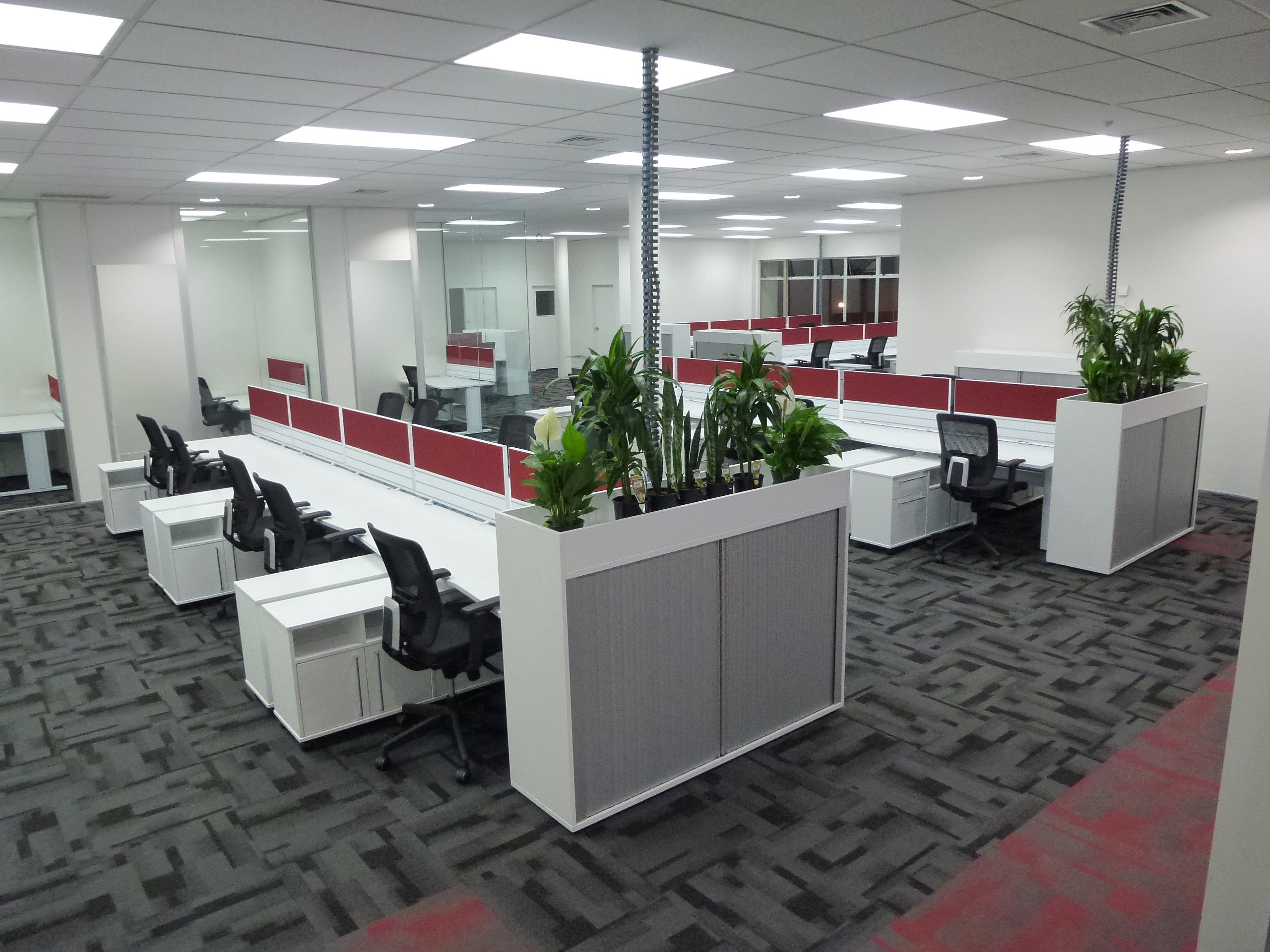 How I Found A Profesional Carpet Cleaning Company For My New Office Space